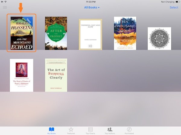 books-in-ipad-appstore
