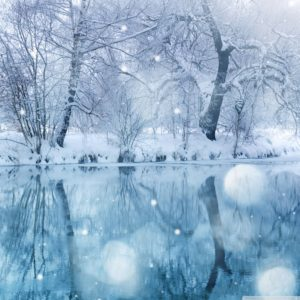 winter_snowfall-wallpaper-2048_2048
